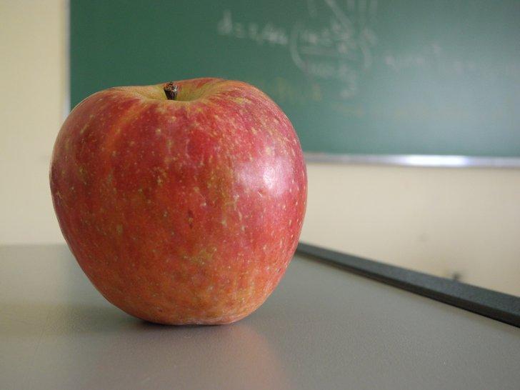 Красивое поздравление учителям в прозе 199