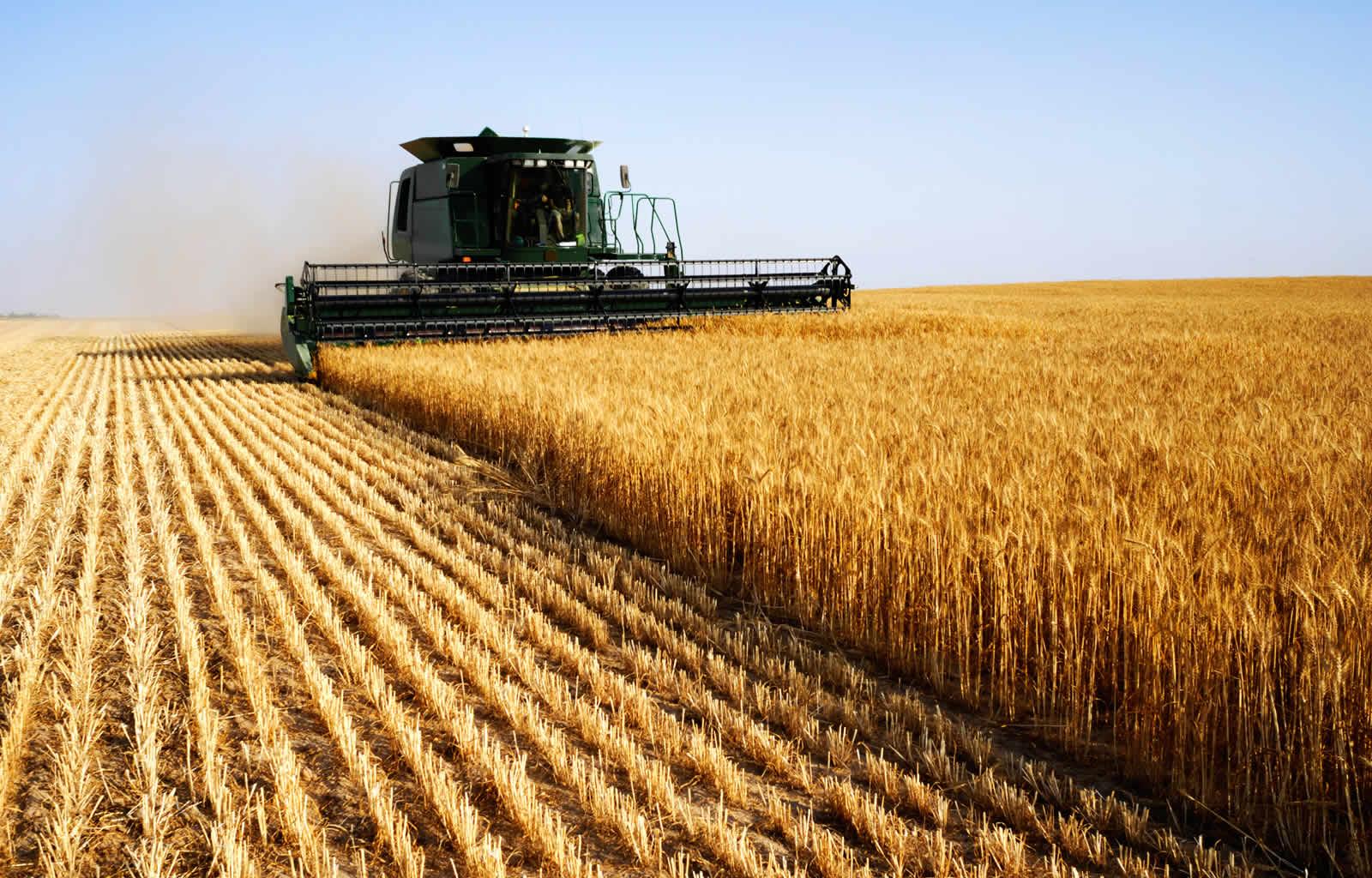 Поздравление день работника сельского хозяйства 114