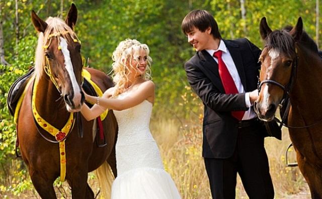 Поздравление на свадьбу прикольные с вручением прикольных подарков 66