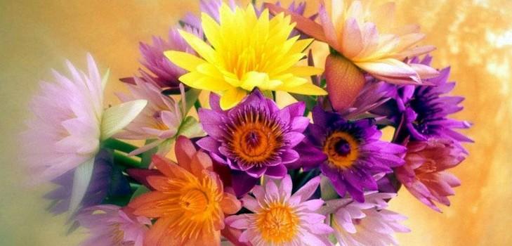 Поздравление с днем рождения руководителя женщину в стихах красивые 34