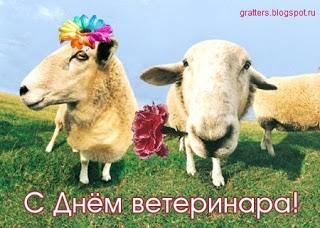 Поздравление с днем ветеринарного работника в прозе 80
