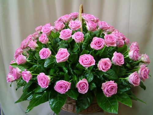 Поздравление в стихах женщине с 65 летием 87