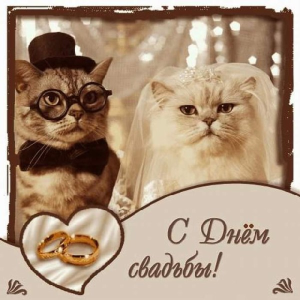 Поздравления на свадьбу от свидетелей 54
