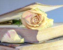 Поздравления в стихах с 8 марта 146