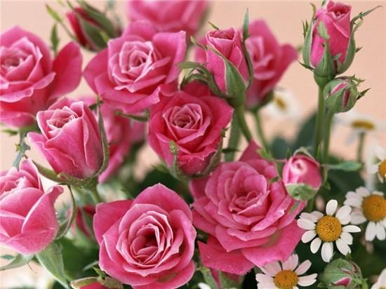 Трогательные поздравления с днем рождения свекрови от невестки 5